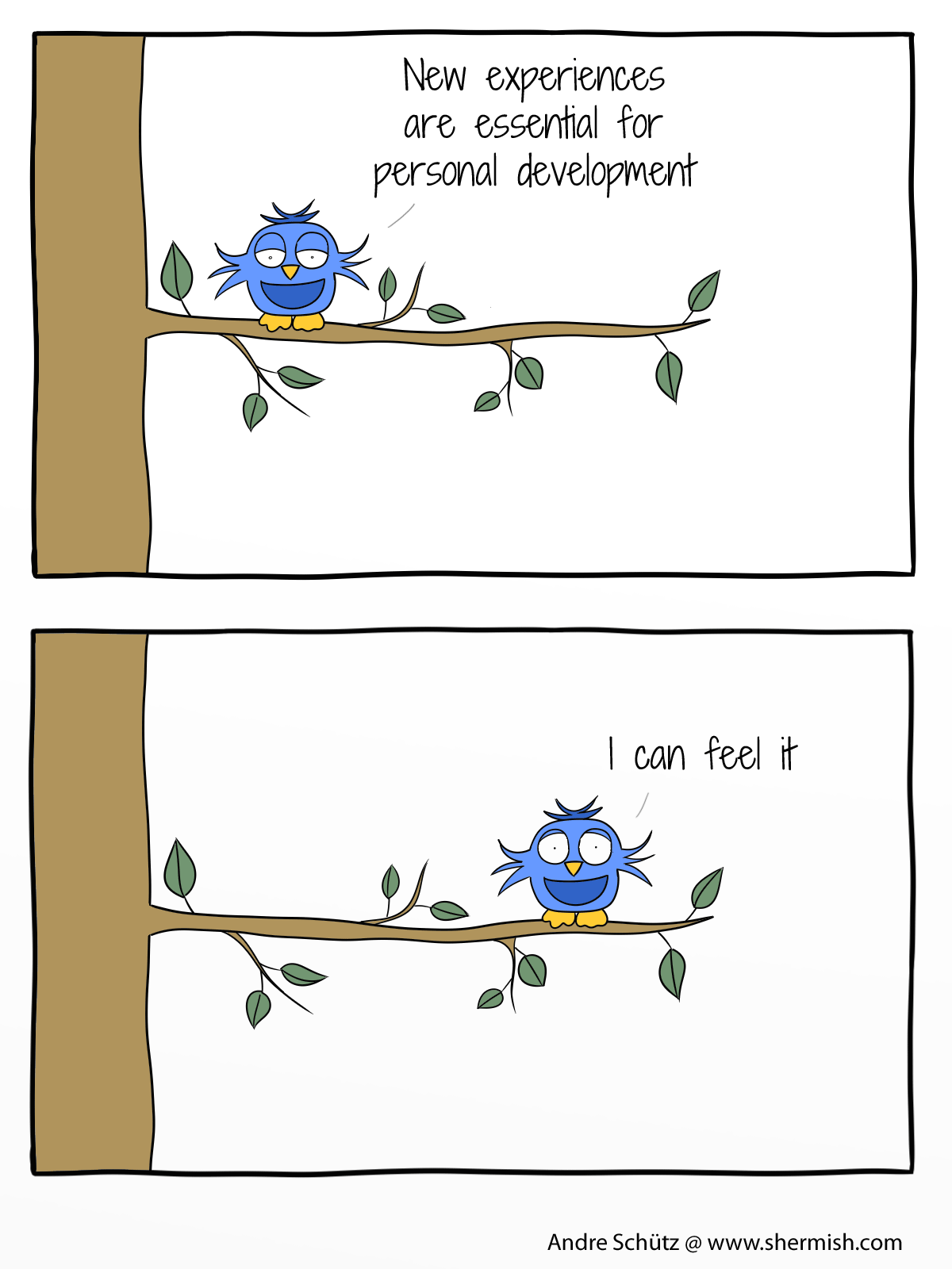 Birds: New experiences can change your life