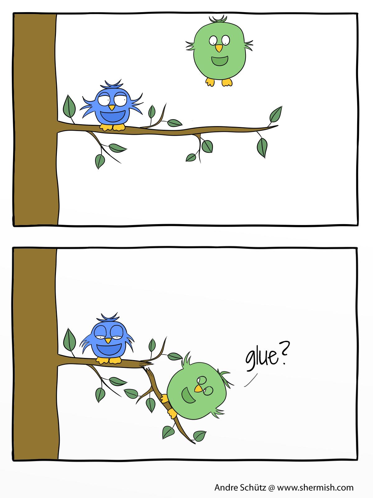 Birds: Birds are bad craftsmen