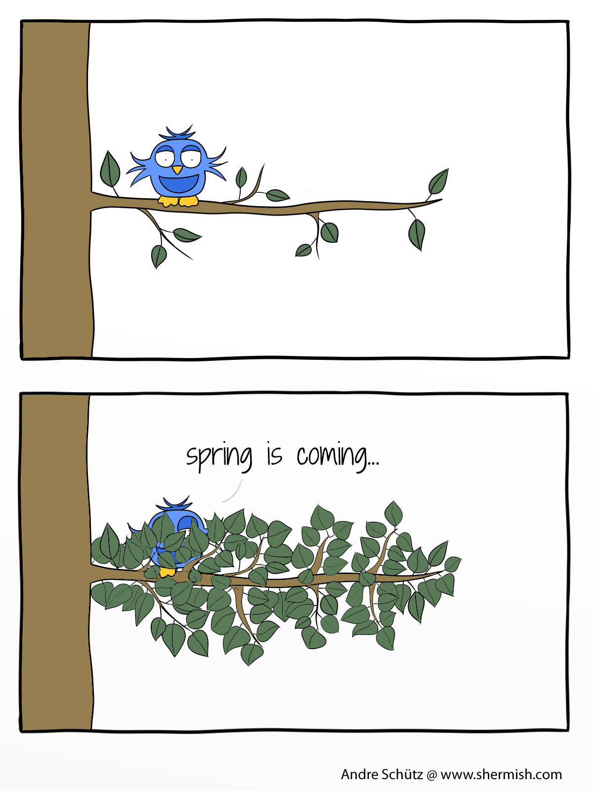 Birds: The spring is coming ...